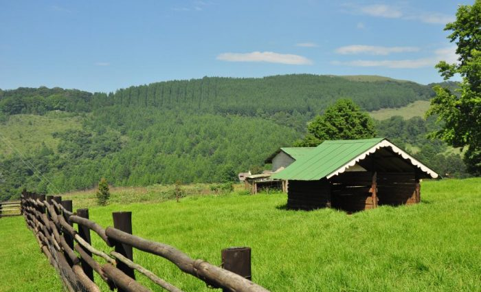 Midlands Meander: A long weekend at Brahman Hills